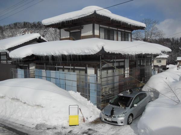 kazakiri 44 wagaya no yuki
